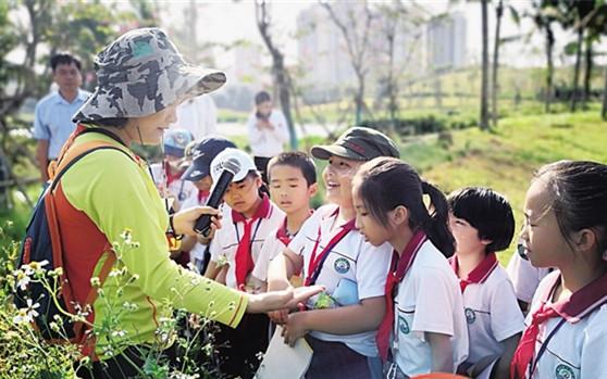 """""""边玩边学"""" 海口丁村小学学生走进湿地公园涨知识"""